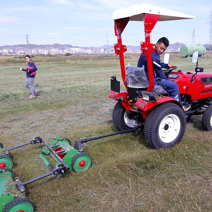Coach Davaa Cutting Grass